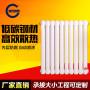 钢制暖气片 散热器 壁挂式散热器 散热好定制产品