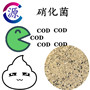 今日報價:江門活性氧化鋁