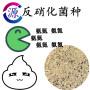 今日报价:黑龙江活性氧化铝
