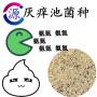 今日報價:梧州陽離子聚丙烯酰胺