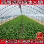 2020廣西桂林市8米無立柱大棚設計圖專業搭材料