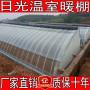 2020江西省新余市鋼結構大棚建一畝哪里賣