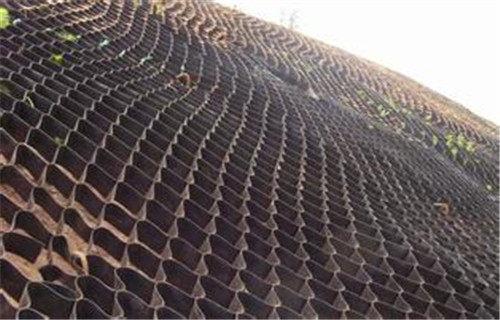 英德蜂巢系統生態護坡生產廠家_歡迎訪問