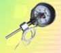 郫县WSS-501轴向型双金属温度计打折
