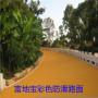 贵港市SP彩色防滑路面一级代理 富地宝彩色路面材料