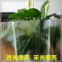 沽源县透明玻璃钢阳光板/什么品牌