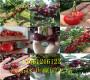 批发:新疆阿勒泰2-3年晚熟冬雪桃树哪里卖的好