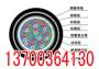 北京销售RVV22铠装电源线,北京生产品牌RVVZ22