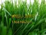 光山县》阳台庭院用人造草坪厂家》工厂