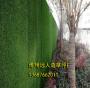 张掖市可以做绿植围挡的厂家(实景拍摄:麦积、平川、两当)