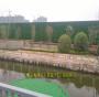 新闻:随州 假草皮装墙壁图片大全(云梦:房县:浠水)