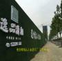 新闻:孝感 绿色草皮墙面照片(秭归:英山:枝江)