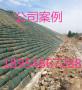 渭南山体护坡生态袋、批发【欢迎您】有限责任公司