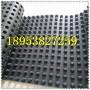 通化3公分聚乙烯排水板沈陽濾水板