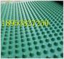 內蒙古塑料pvc或聚乙烯PE排蓄水板現貨銷售石嘴山濾水板