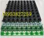 濮陽1.5mm厚EVA蜂窩式防水板哪家好濱州濾水板
