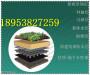 安慶5公分樓頂花園排水板甘南濾水板