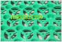 南市10厚滤水板乐业塑料排水板