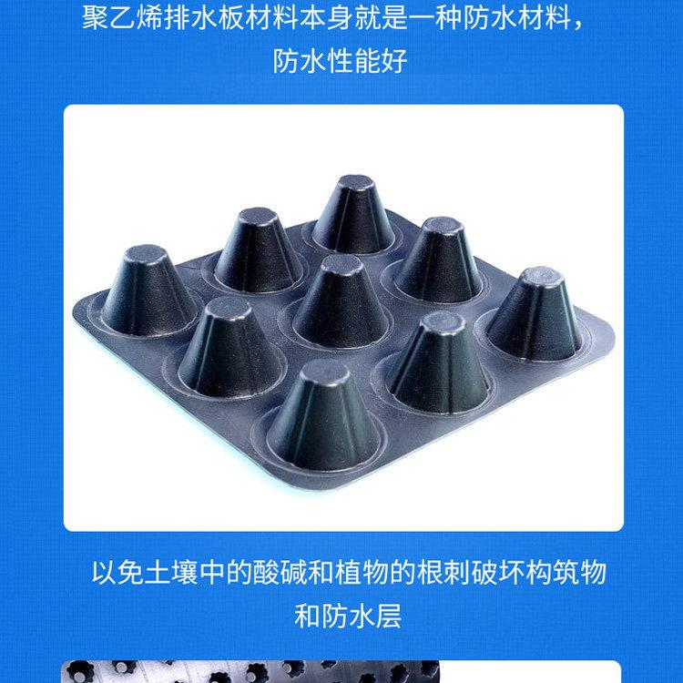 2021歡迎##江蘇省宿遷市卷材排水板##     1.6公分卷材排水板銷售