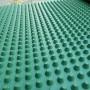 2021歡迎##湖北省黃岡市車庫塑料排水板##     25mm車庫塑料排水板安裝