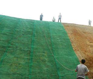 2021歡迎##棗莊水土保護毯##EM3廠家