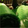 广东湛江—生态袋生产厂家—本地厂家