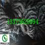 天津南開瀝青麻絲板#供應