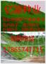 黑龙江草坪种子