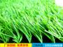 新闻:楼顶塑料草坪(马鞍山当涂县)生产厂家