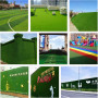 今日推荐:安平足球场专用草坪多少一平米