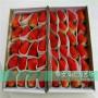 天仙醉草莓種苗 種苗,寧夏太空2008草莓苗