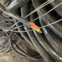 2021铠装电缆回收收购电话&太仓电线电缆回收