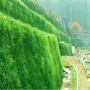 新闻:鹰潭堤坝防护生态袋厂家——欢迎您