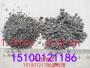 歡迎##合肥白色系列彩砂##實業集團