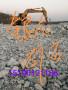 歡迎##溫州天然彩砂##實業集團