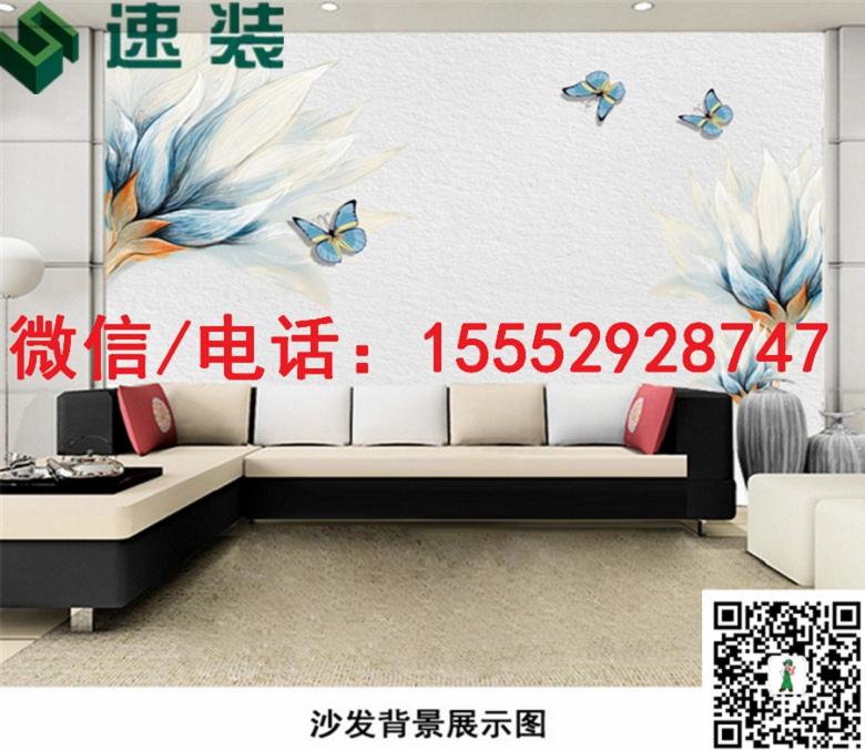 四川泸州3D/5D/6D背景墙/厂家低价进货/快速发货