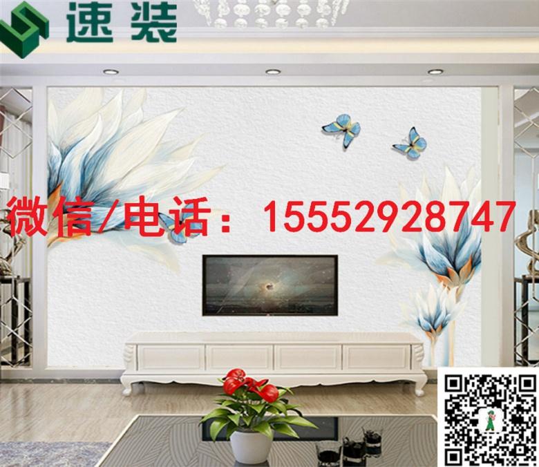 西 藏 阿里速装/3D/5D/6D背景墙/厂家直销/新潮