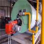 湖南湘西15噸蒸汽鍋爐生產制造商-【行業】[股份@有限公司]