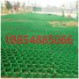 2021歡迎##洛陽市園林綠化植草格##銷售