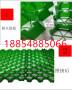 2021歡迎##瀘州市4公分塑料植草格##廠家施工