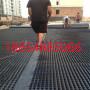 遼寧營口立體排水板現貨