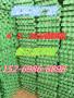 今日報價:晉城5公分植草格生產廠家@歡迎來電咨詢