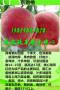 福建三明》哪里有台农甜蜜桃树苗/报价?
