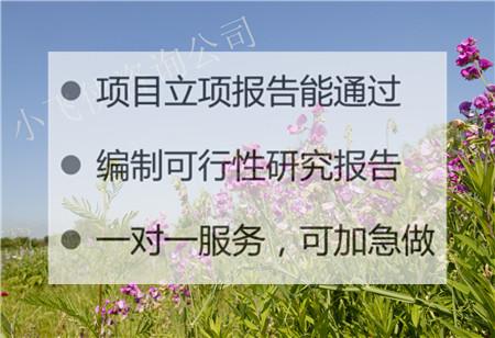 2021連云港海州代寫立項報告,報告撰寫,加急出報告