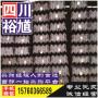 廣安津西Q235BH型鋼,地址Q電話355B用戶評價