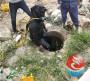 新聞:潞城堵漏施工建筑制作-水下裂縫與滲漏處理