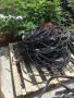 南京電纜線回收價格汕尾鍋爐回收