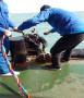 新聞:渭南市導流洞封堵【咨詢】——潛水蛙人