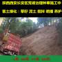 江西吉安邊坡種草綠化噴播機總公司