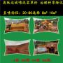 九江邊坡綠化噴泥機—營銷廠家
